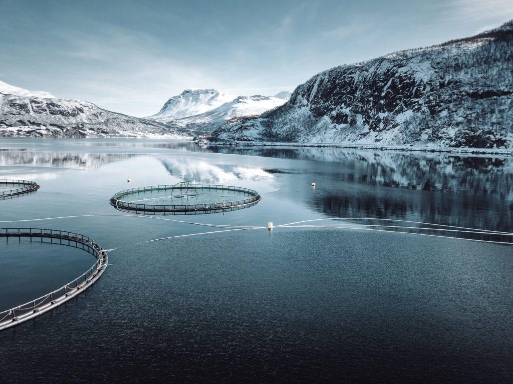 Hav - akvakultur
